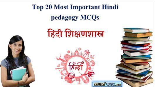 Top 20 Most Important Hindi pedagogy MCQs || For CTET,MPTET,UPTET,RTET