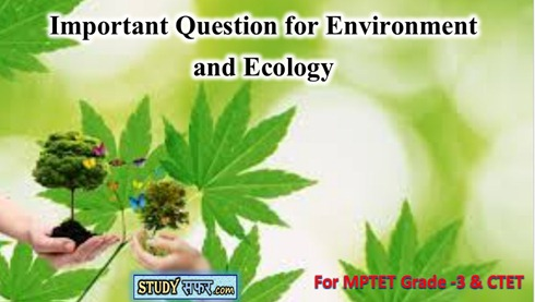MP TET 2020 Environment and Ecology Important Questions