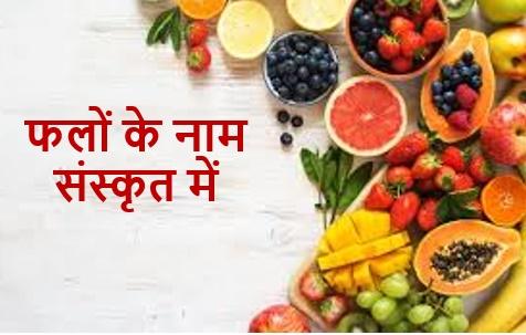 Fruits Name in Sanskrit Language|| फलों के नाम संस्कृत में