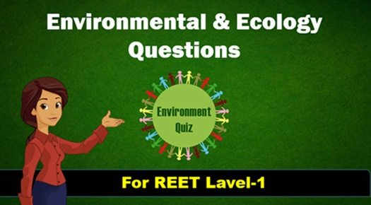 Environment Question and Answer