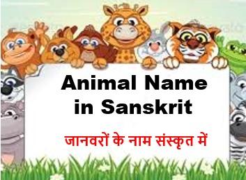 All Animal Name in Sanskrit and Hindi
