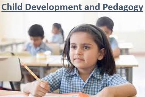 Child Development Pedagogy
